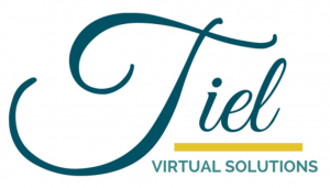 Tiel Virtual Solutions logo enlarged